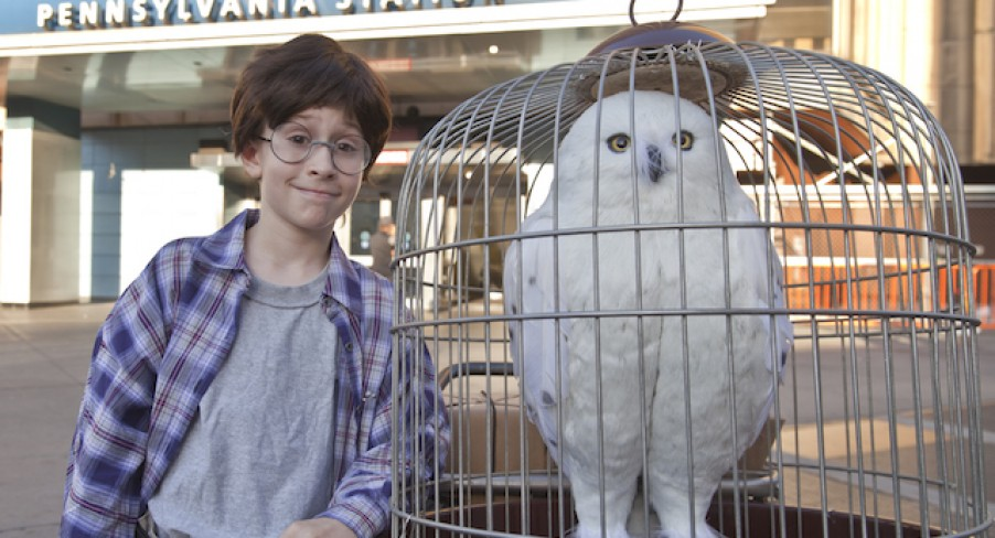 Featured Image Harry Potter in Real Life