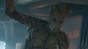 Featured Image iamgroot. iamgroot